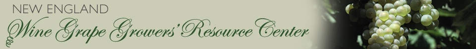 New England Wine Grape Growers' Resource Center